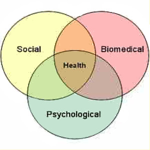 bio psycho social Abstract the biopsychosocial model is both a philosophy of clinical care and a practical clinical guide philosophically, it is a way of understanding how suffering, disease, and illness are affected by multiple levels of organization, from the societal to the molecular.