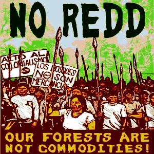 NO REDD protesters